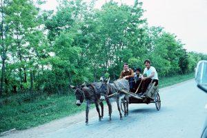 Transport in 2000