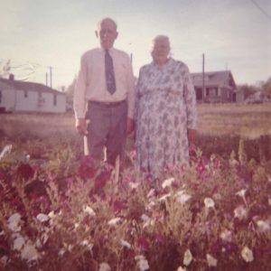 In their garden